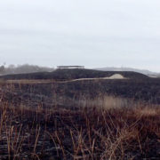 Battery Marcy, after the 2018 prescribed burn