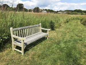 Williamson Memorial Bench