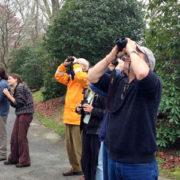 Bird Count birders