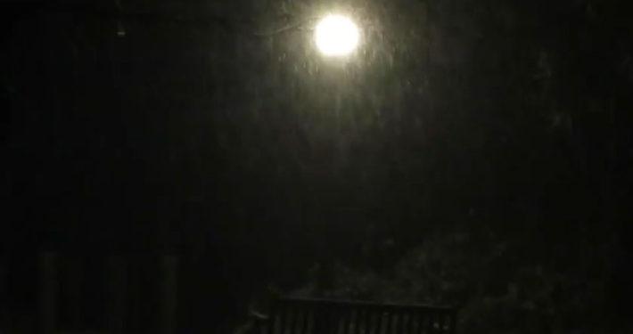 Let it snow by Justine Kibbe
