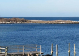 Hay Harbor